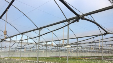 Greenhouses heating for less